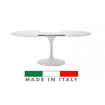 Tulip Eero Saarinen table...