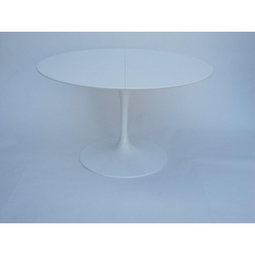 Tulip Eero Saarinen table...